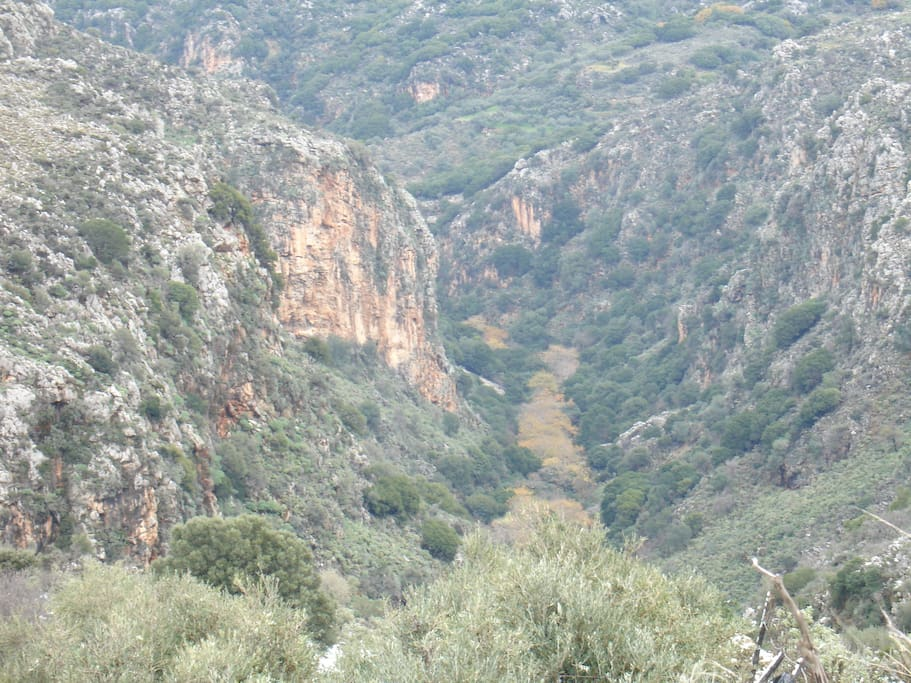 Gorge close to the property