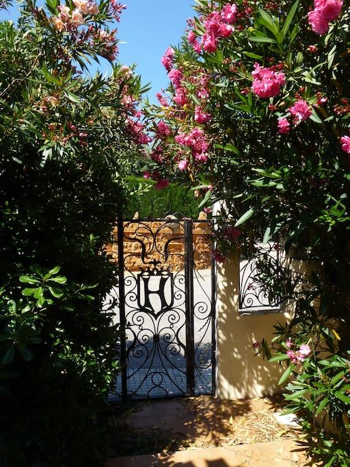 das Gartentor zur Straße