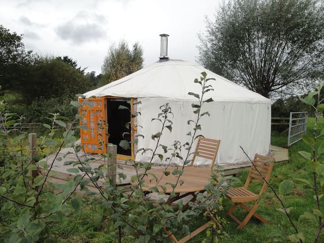 Authentic Mongolian Yurt near Wye - Fownhope - Yurt