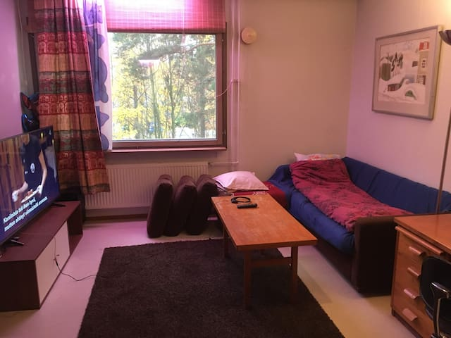Big room, sofa bed, SmartTV, walkway from Metro.