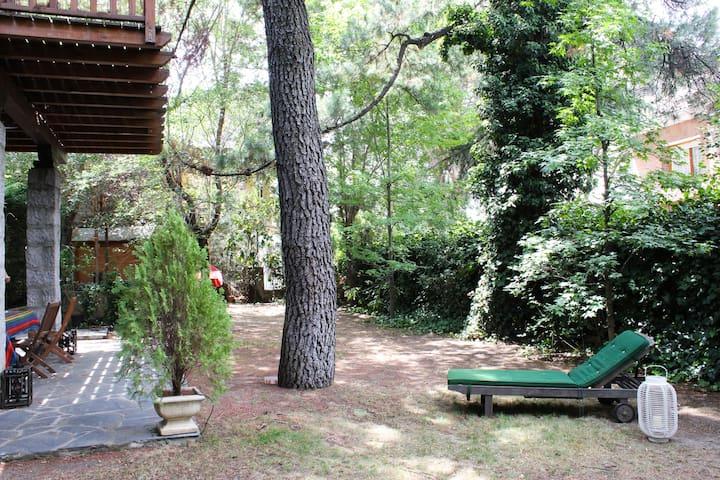 Suite en la Sierra de Madrid - Galapagar - Casa