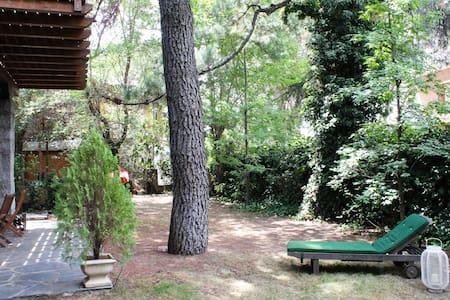 Suite en la Sierra de Madrid - Galapagar