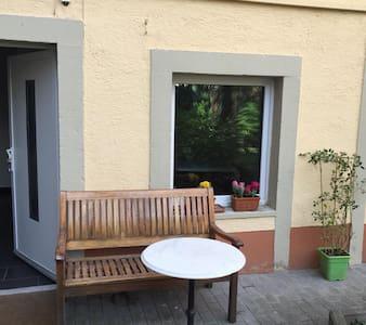 Zentrale neurenovierte 2 Zimmer - Heidelberg - Apartment