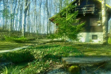Wooden cottage Bobica - forest soul - Pokupsko