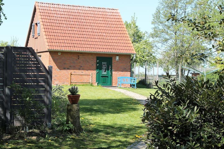 Lovely Holiday Home in Zierow with Terrace