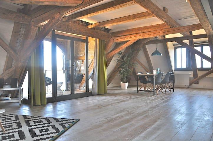 Herrliches Ambiente mit Seeblick - Reichenau - Casa