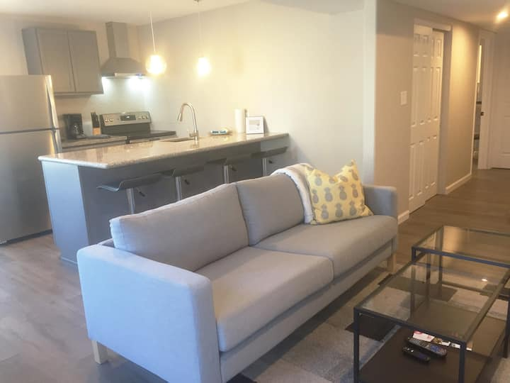 Private Executive Suite #2 - Large One Bedroom