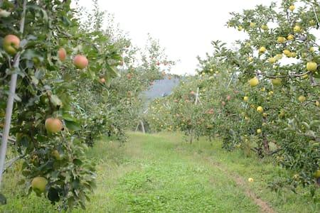 Yokoya Farm - Matsumoto-shi - Ev