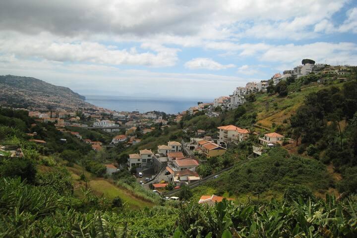 Villa Tangerina - Funchal - Talo