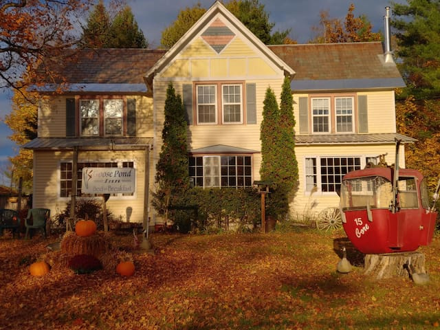 Adirondack B&B 1 bed/1 bath 5 min to Gore Mtn