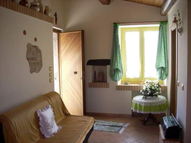 Affittasi carinissimo bilocale  - Tortoreto - Haus
