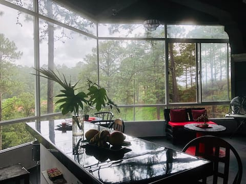 The woods in the City.- Complete loft