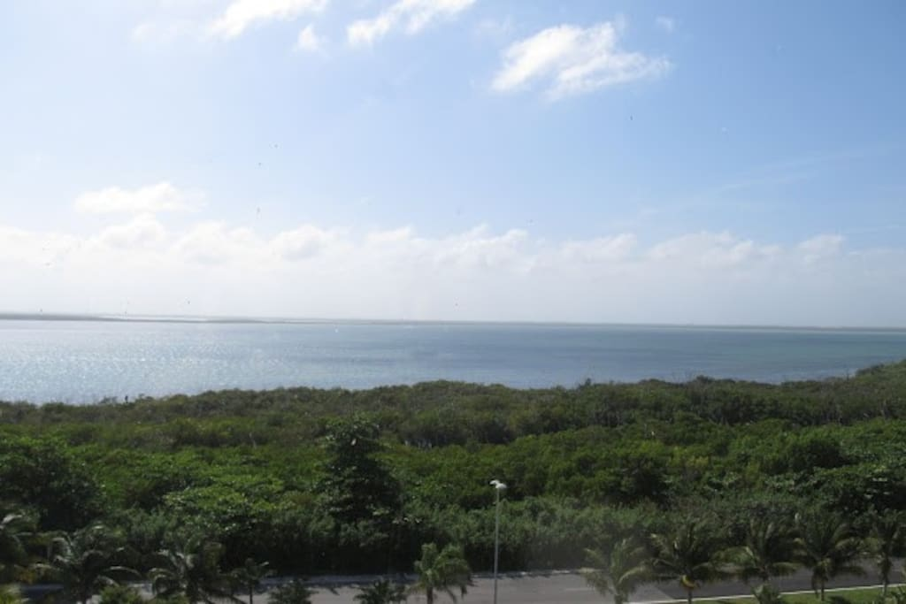 ACTUAL VIEW  OF THE LAGOON FROM THE LAGOON UNIT