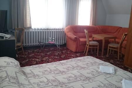 Hotel Wettin