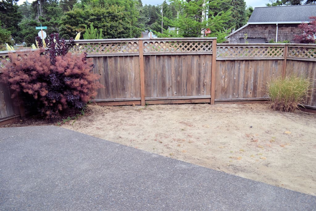 View of the side yard