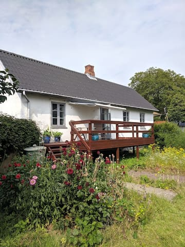 The guesthouse from the gardenside