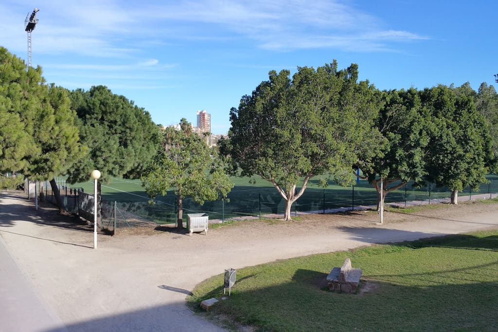Rio Turia Park just 5 minutes away, great for jogging and biking