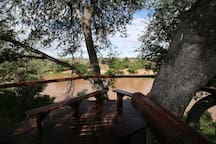 Tree deck over river view