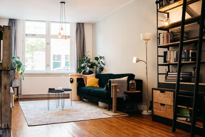 Stylish and comfortable appartement with a cat.