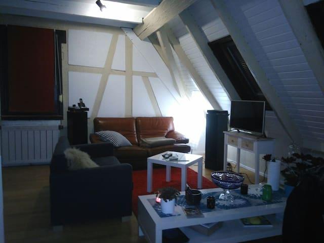 Charmant Duplex à 10 min du centre - Schiltigheim - Apartamento