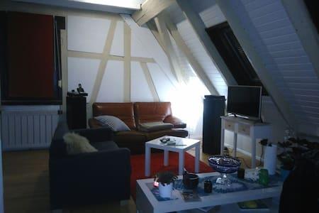 Charmant Duplex à 10 min du centre - Schiltigheim - Leilighet