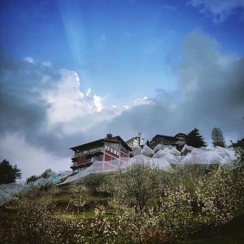 The Shilaroo Project- a unique mountain home