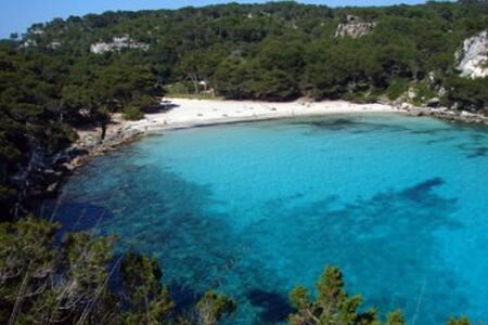 Musetta - Ciutadella de Menorca