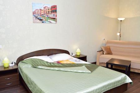 Уютная, просторная, 5 мин от центра - Voronez - 公寓
