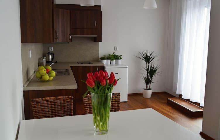 Apatrmánový dům Landek -  luxury sunny apartment - Ostrava - Διαμέρισμα