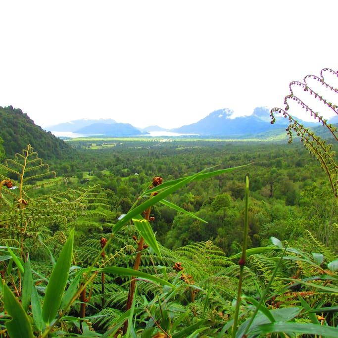vista de Hornopiren desde el sendero a las cascadas