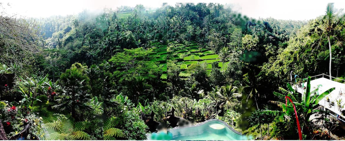 Tirta Asri Ubud, Guest Apt. with magical view