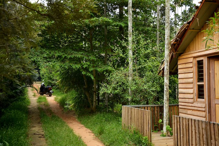 Woods Away Private Floor ~ Forestree Holidays
