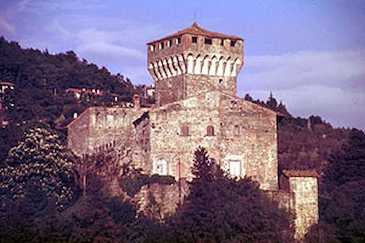 Il Castello della Fioraia - Arezzo  - Castell
