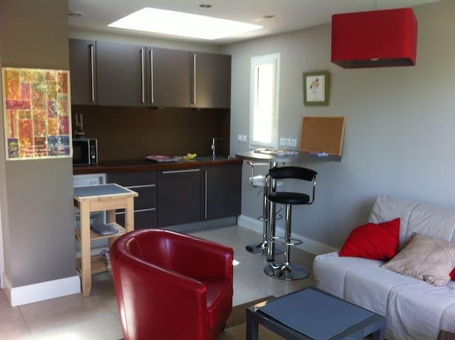 New !  appartment 40 m2  calme ,comfortable - Sainte-Foy-lès-Lyon - Casa