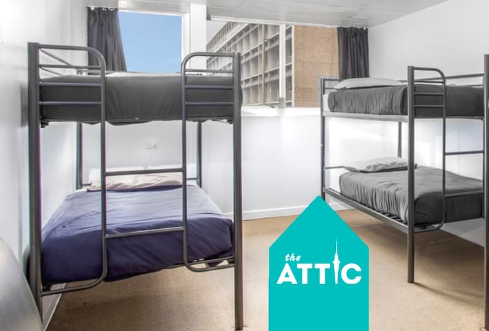 Bed in 8-bed dorm - spacious, light, city-central