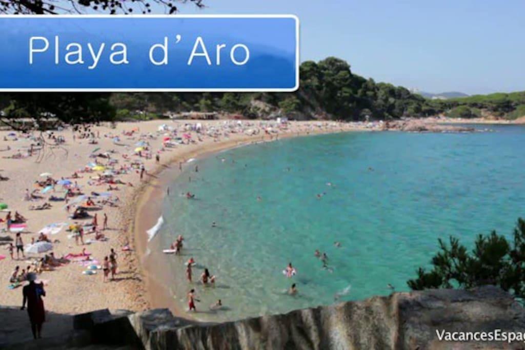 Platja de aro costa brava apartamentos en alquiler en platja d 39 aro catalunya espa a - Pisos alquiler platja d aro ...