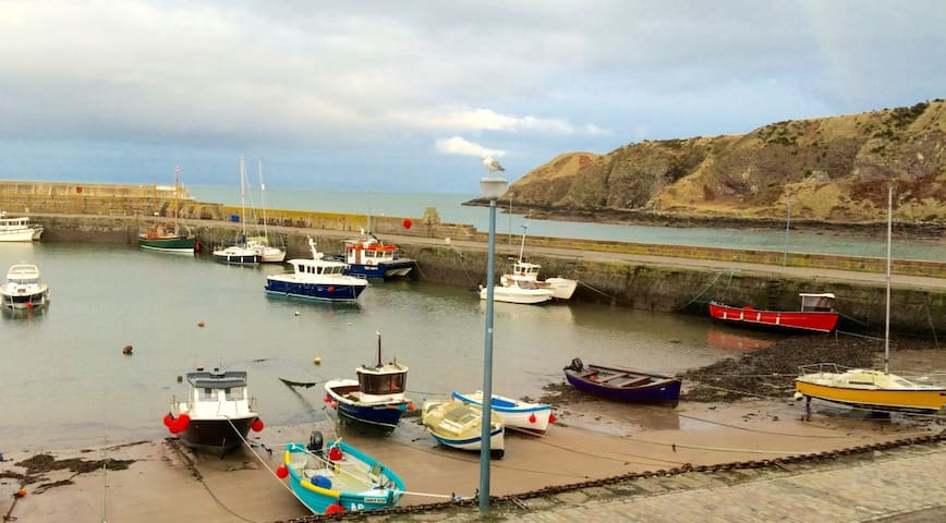 Harbour View, 23 Shorehead, Stonehaven - Stonehaven - Hus