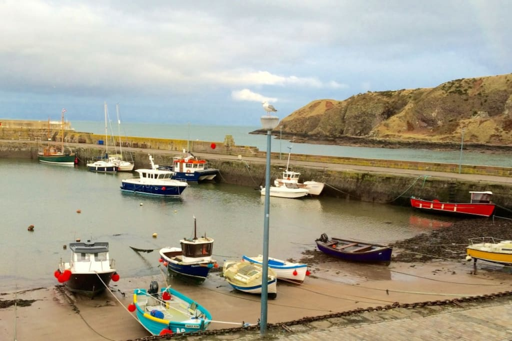 Fabulous harbour views from the cottage