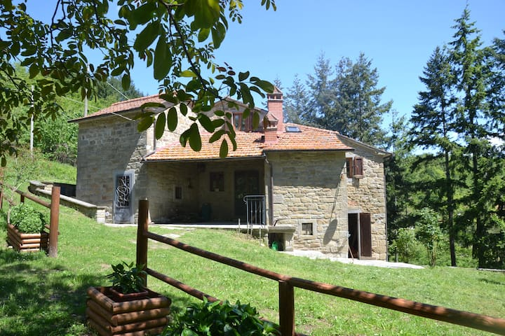 Casa Martino - Ancient villa in Tuscany