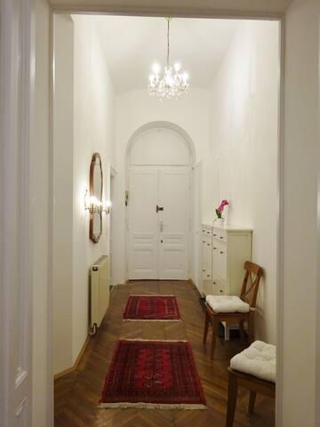 Altbauwohnung im schönen Wiener neunten Bezirk - Wien - Apartment