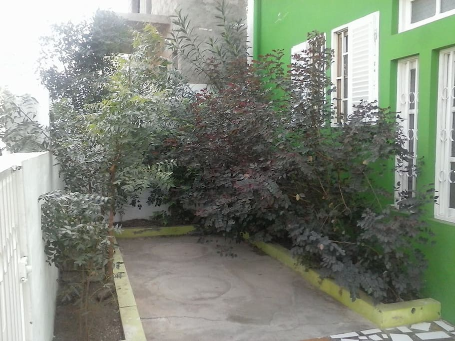 The green entrance to the office