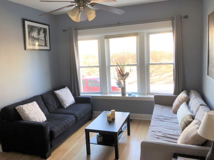 Bright 2 Bedroom Lakeview Condo Condominiums For Rent In Chicago Illinois United States