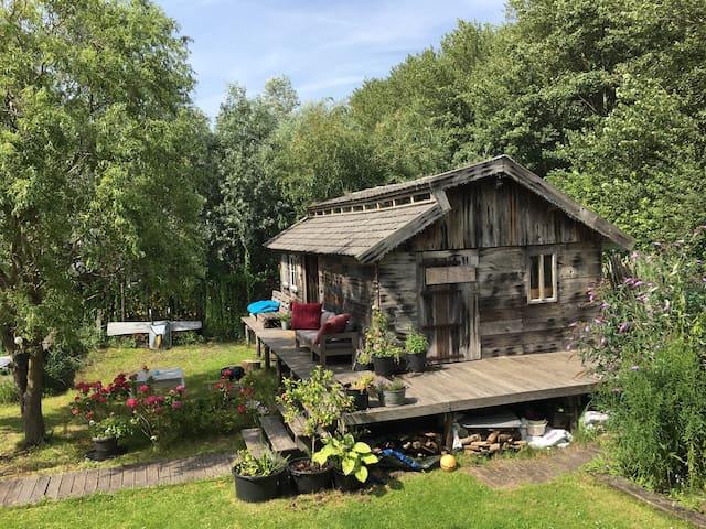 Cabin in the green - near Amsterdam, Formula 1