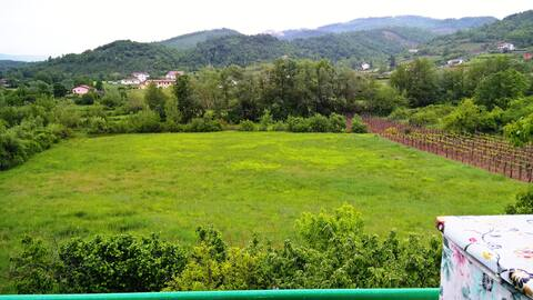 La Rosa Bianca   ( Intera casa immersa nel verde )
