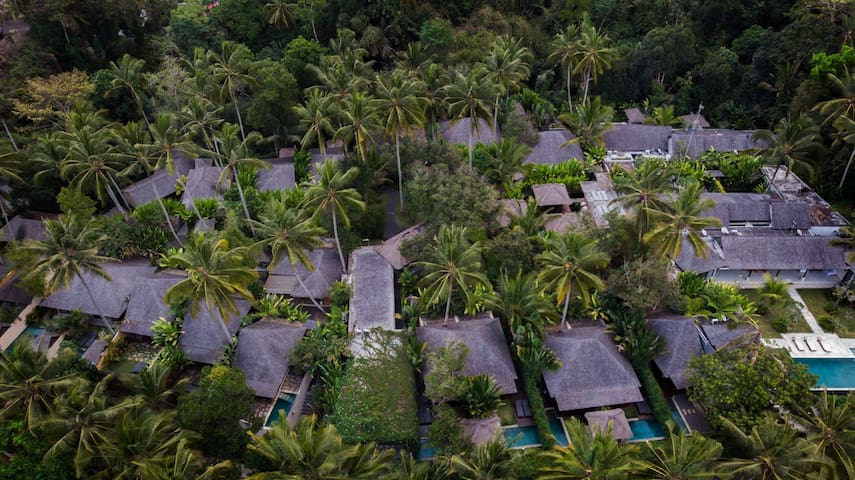 Nature Private Pool Villa with Jungle View in Ubud
