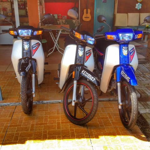 Motorbike Rental & car rental