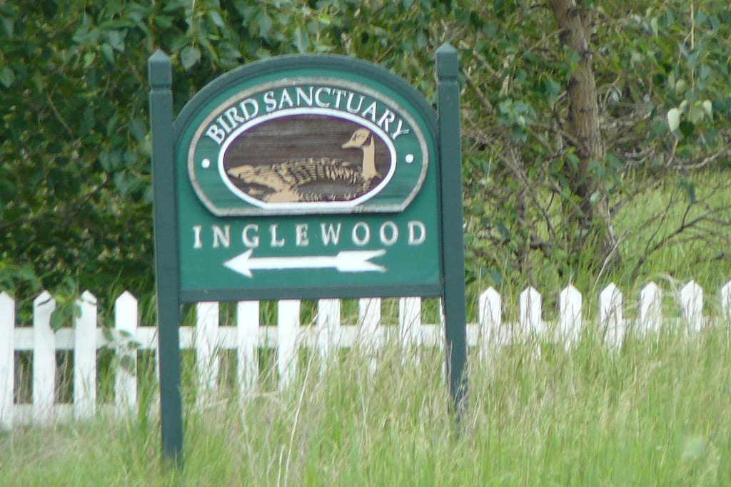 Inglewood bird sanctuary 10 minutes walk on quiet avenue