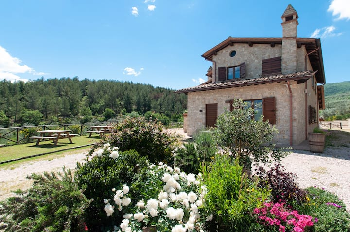 Wheelchair accessible apartment with pool, Umbria