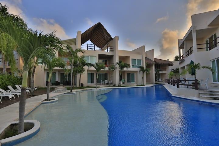 Estudio Completo Puerto Aventuras - Coral Maya