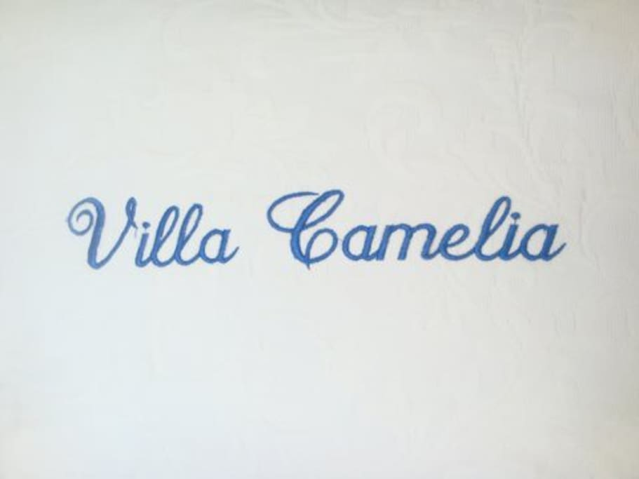 Welcome to Villa Camelia overlooking the Bay of Acapulco